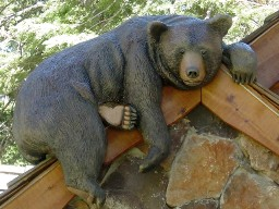 What To Know About Bear Carvings For Sale
